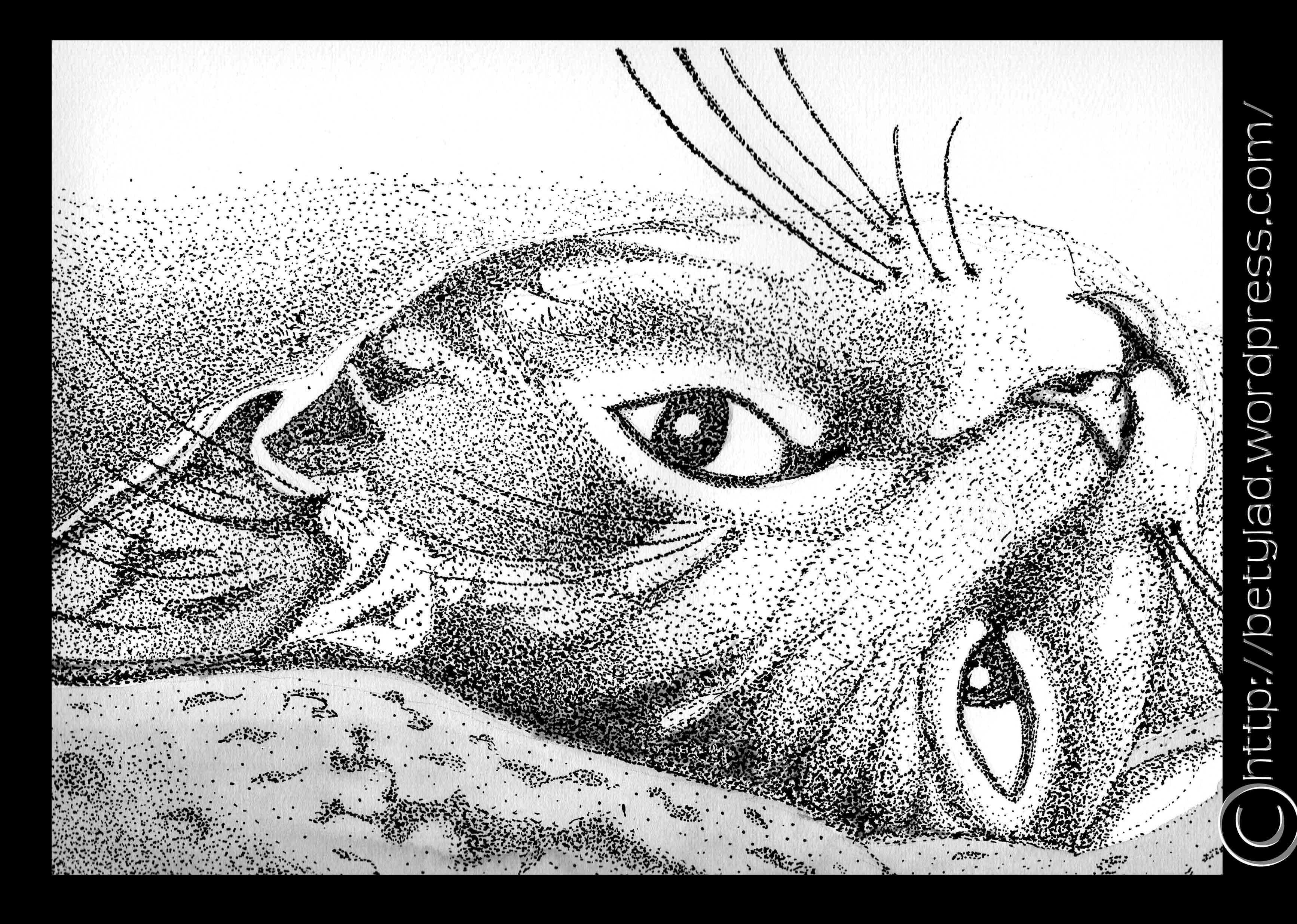 Dibujos Beatriz Asato